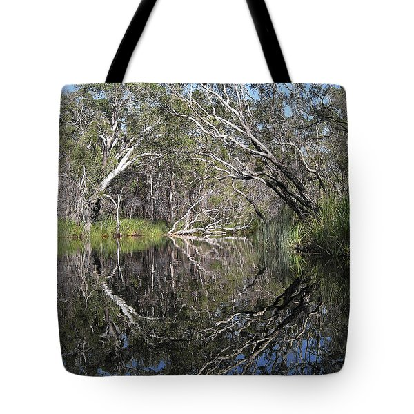 Natures Portal Tote Bag