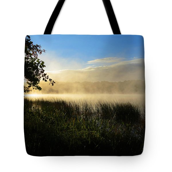 Tote Bag featuring the photograph Nature's Way by Dianne Cowen
