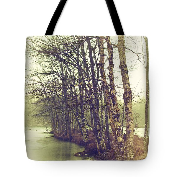 Natures Winter Slumber Tote Bag by Karol Livote