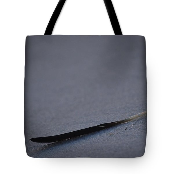 Tote Bag featuring the photograph Navarre Beach Solo Bird Feather by Jeff at JSJ Photography