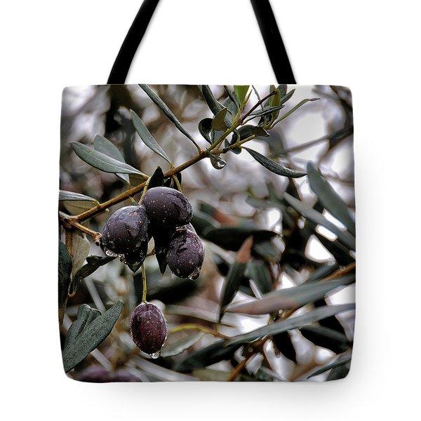 Nazareth Olives Israel Tote Bag