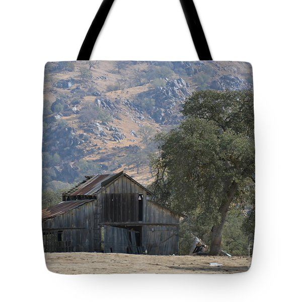Tote Bag featuring the photograph Nearly Gone by Debby Pueschel
