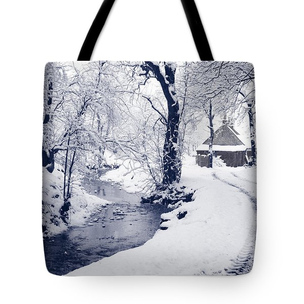 Tote Bag featuring the photograph Nearly Home by Liz Leyden