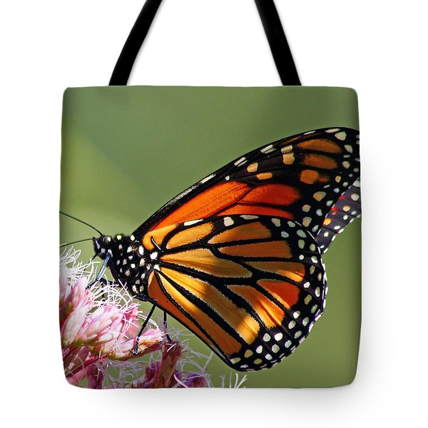 Tote Bag featuring the photograph Nectaring Monarch Butterfly by Debbie Oppermann