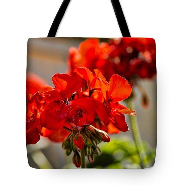 neighbour's flower DB Tote Bag
