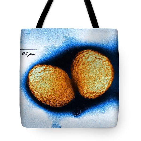 Neisseria Gonorrhoeae Tem Tote Bag by Kwangshin Kim
