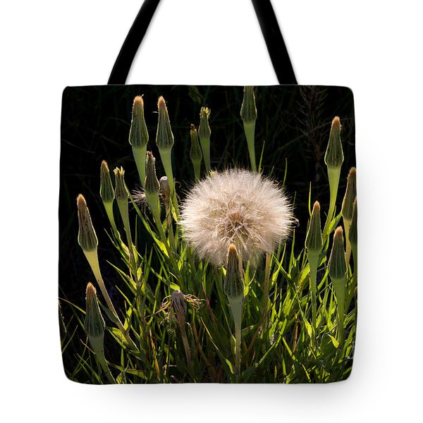 Tote Bag featuring the photograph Neon Dandelion by Angelique Olin