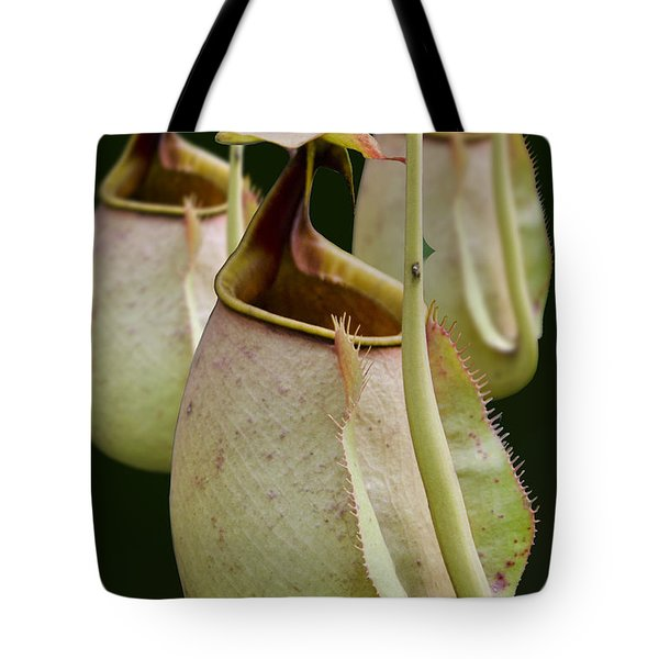 Nepenthes Tote Bag by Roger Leege