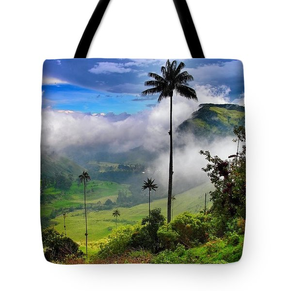 Tote Bag featuring the photograph Nephilim by Skip Hunt