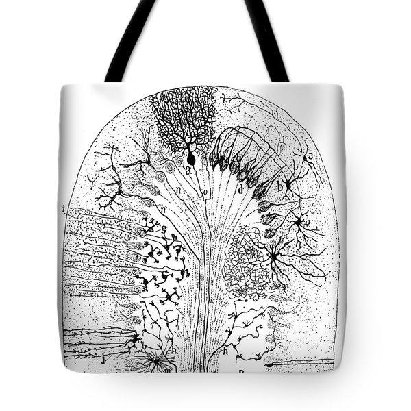 Nerve Cells, 1894 Tote Bag by Granger