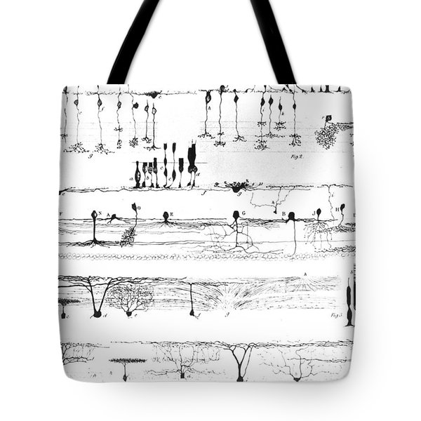 Nerve Structure Of The Retina Tote Bag