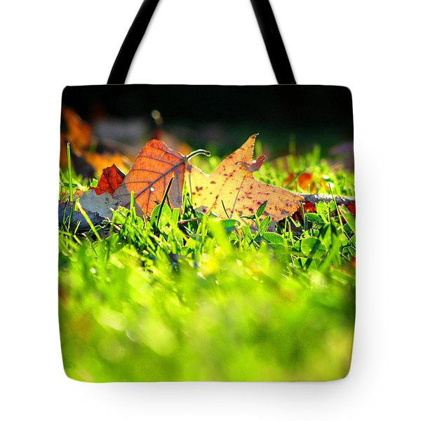 Tote Bag featuring the photograph Nestled by Greg Simmons
