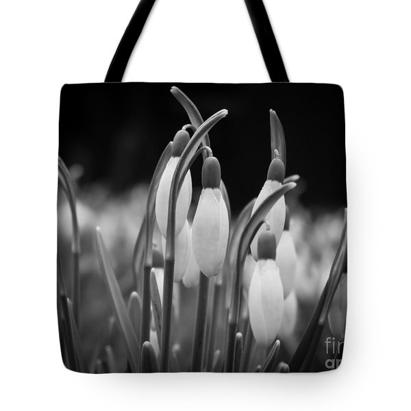 New Beginnings And Hope Tote Bag by Inez Wijker Photography