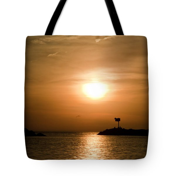 New Buffalo Sunset Tote Bag