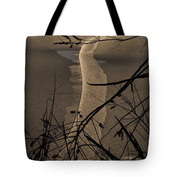 New Directions Tote Bag by Simona Ghidini