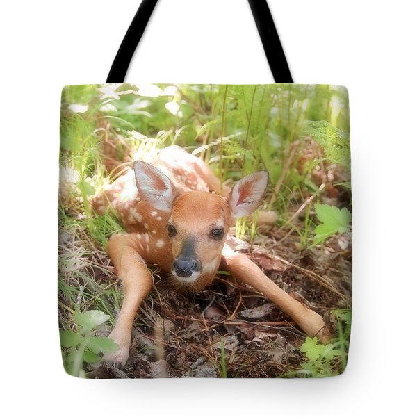 New Fawn In The Forest Tote Bag by Angie Rea
