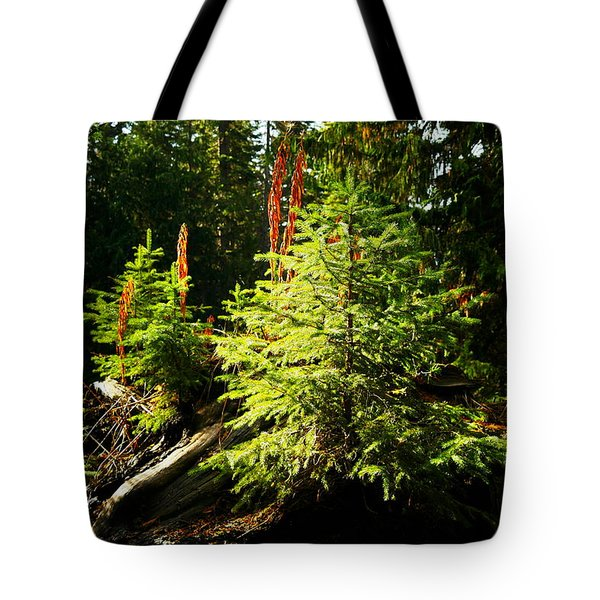 New Forest Tote Bag by Jeff Swan