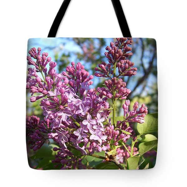 Purple Lilac Tote Bag by Eunice Miller