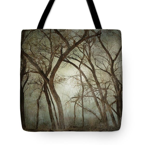 New Mexico Winter Woodland Tote Bag by Andrea Hazel Ihlefeld