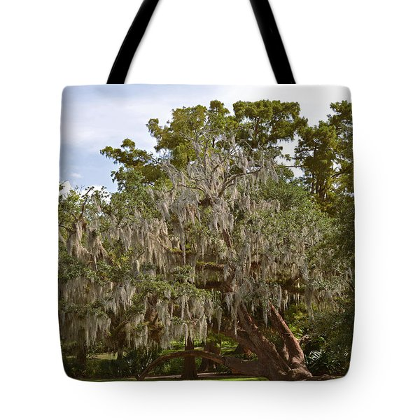 New Orleans Spanish Moss Tote Bag by Christine Till