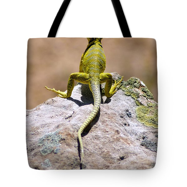 New Photographic Art Print For Sale Lizard Back Ghost Ranch New Mexico Tote Bag