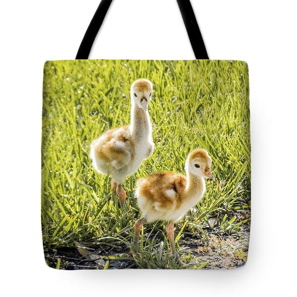 New Sunny Day Tote Bag by Zina Stromberg