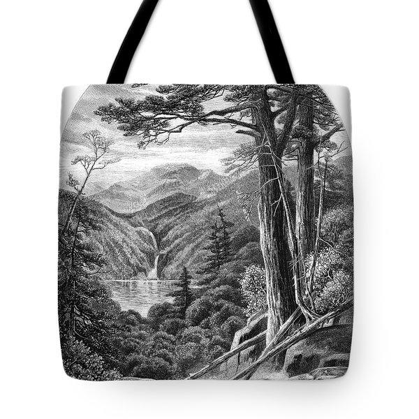 New York Adirondacks, 1872 Tote Bag