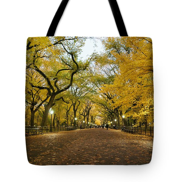New York City - Autumn - Central Park - Literary Walk Tote Bag