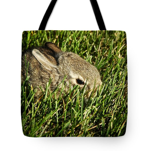 The Baby Cottontail Tote Bag