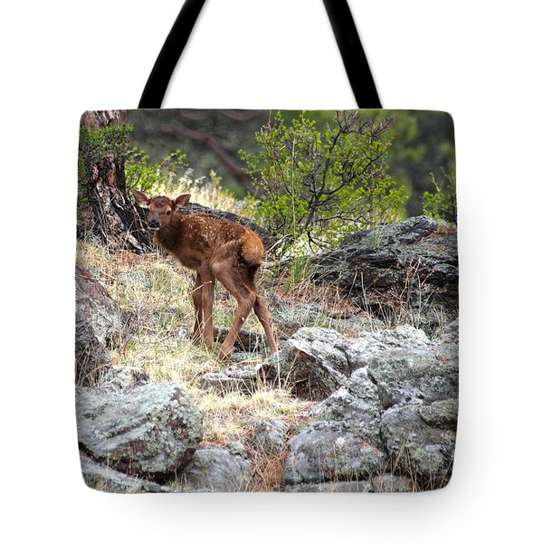 Newborn Elk Calf Tote Bag
