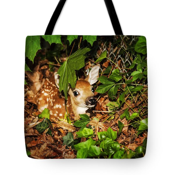 Newborn Fawn  Tote Bag by Eleanor Abramson