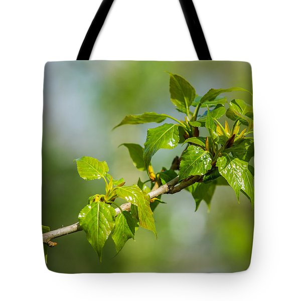 Newborn - Featured 3 Tote Bag by Alexander Senin