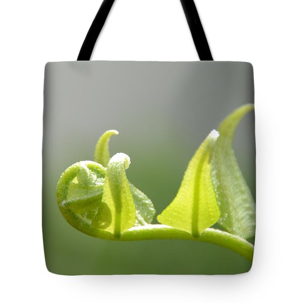 Newborn Leaves Tote Bag by Darla Wood