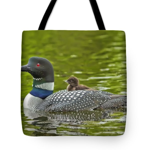 Newborn Loon Chick With Parent Tote Bag