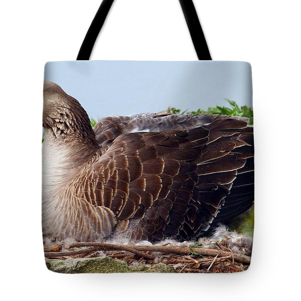 Tote Bag featuring the photograph Newborn Peek by Elizabeth Winter