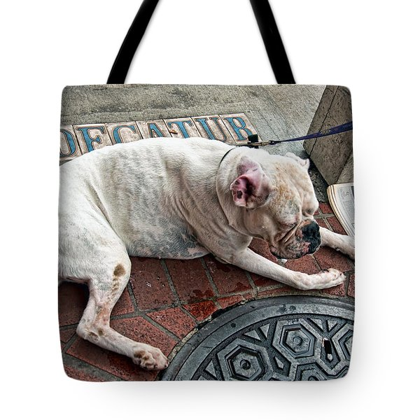 Newsworthy Dog In French Quarter Tote Bag by Kathleen K Parker