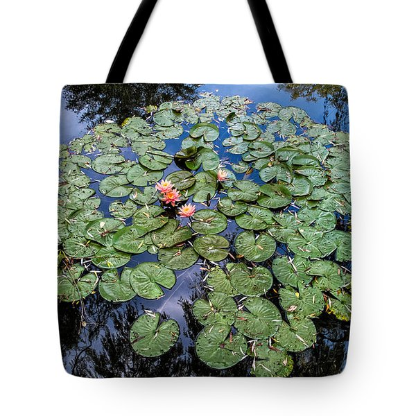 Tote Bag featuring the photograph Nice Pad by Glenn DiPaola