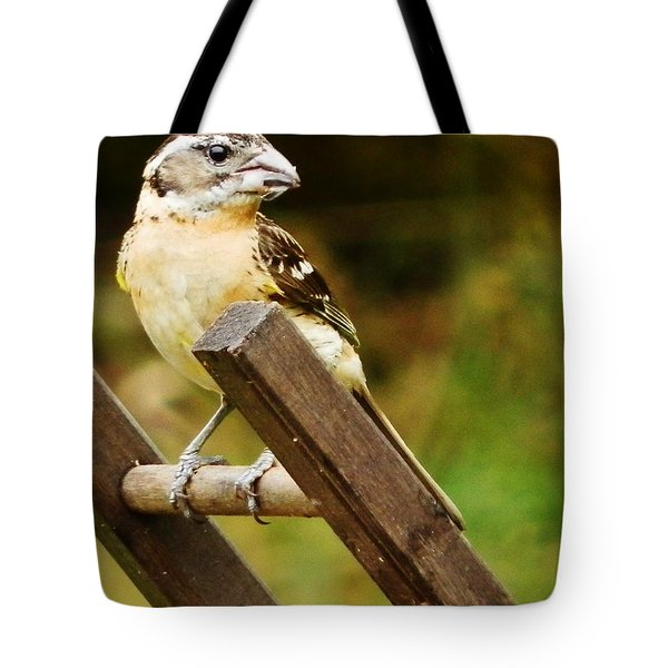 Tote Bag featuring the photograph Nice View by VLee Watson