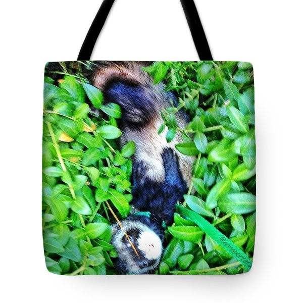 Nicky Ferret On A Garden Walk Tote Bag