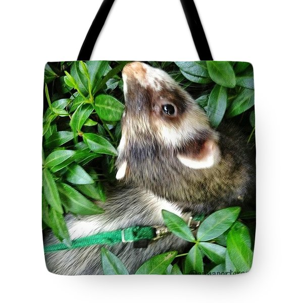 Nicky In The Garden Tote Bag
