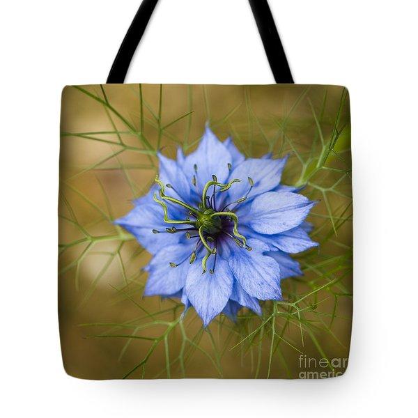 Nigella Damascena Tote Bag by Anne Gilbert