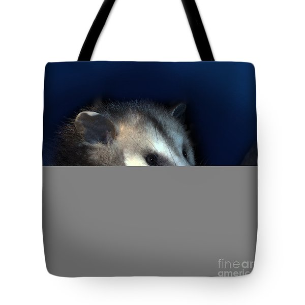Night Creature Tote Bag by Betty LaRue