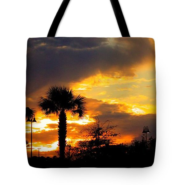 Night Fury Tote Bag