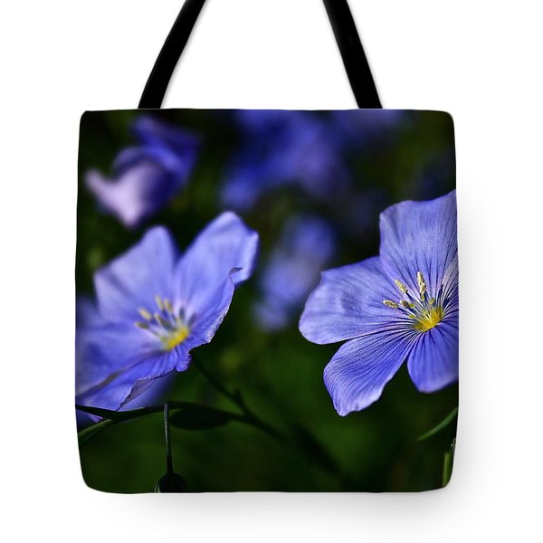 Tote Bag featuring the photograph Night Garden by Linda Bianic