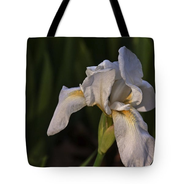 Night Iris Tote Bag by Joan Bertucci