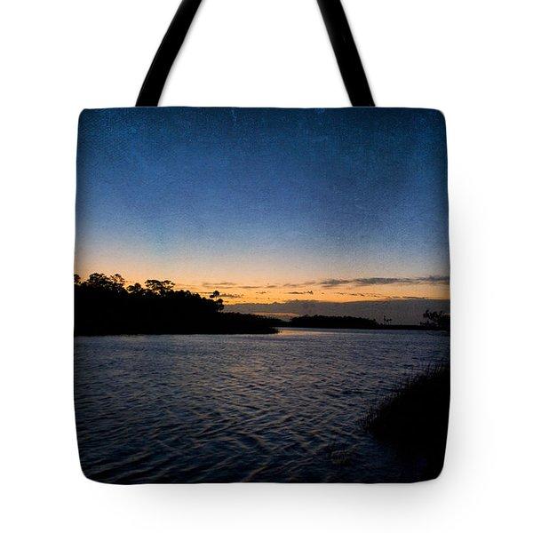 Nightfall Tote Bag by Beverly Stapleton