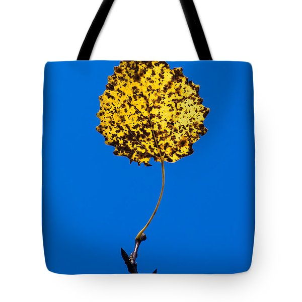 Nightlight Tote Bag by Alexander Senin