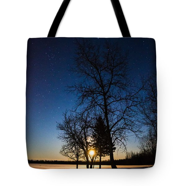 Night's Shadows Tote Bag
