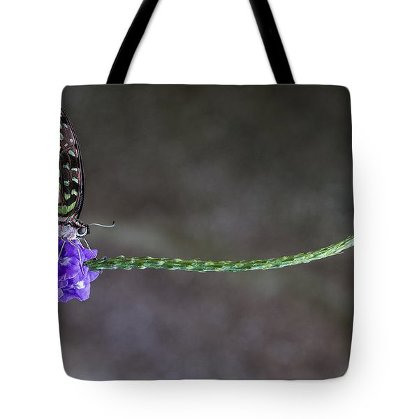 Butterfly - Tailed Jay II Tote Bag