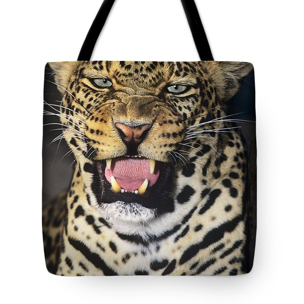 Tote Bag featuring the photograph No Solicitors African Leopard Endangered Species Wildlife Rescue by Dave Welling